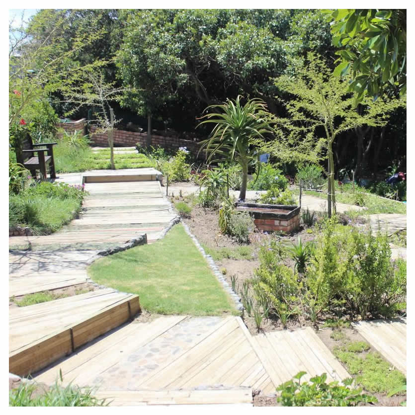 The garden's top paths