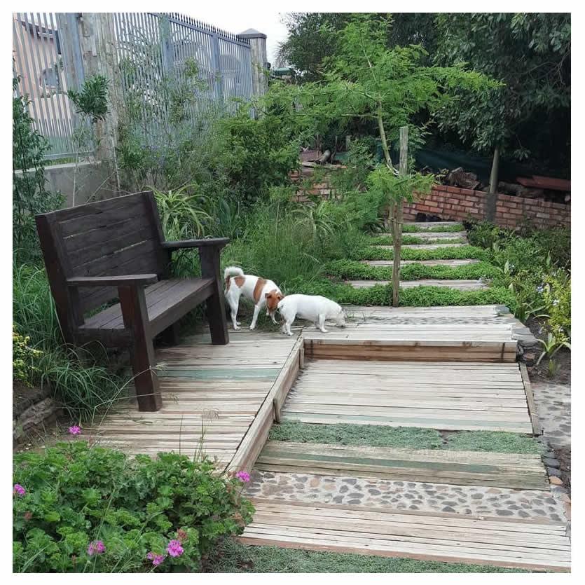 The garden's walkway