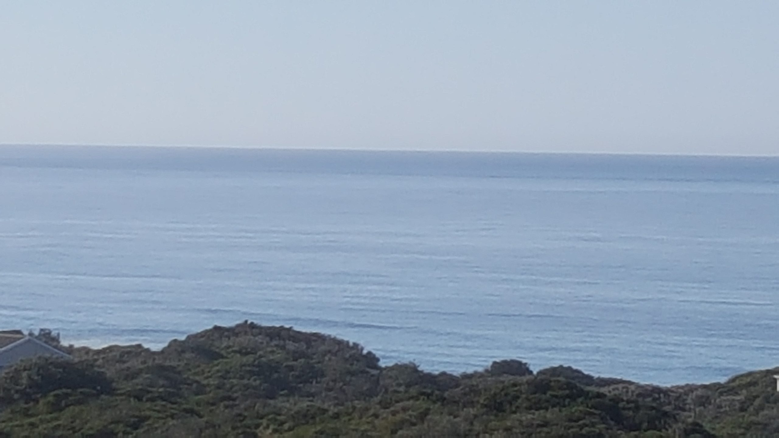 ocean scaled