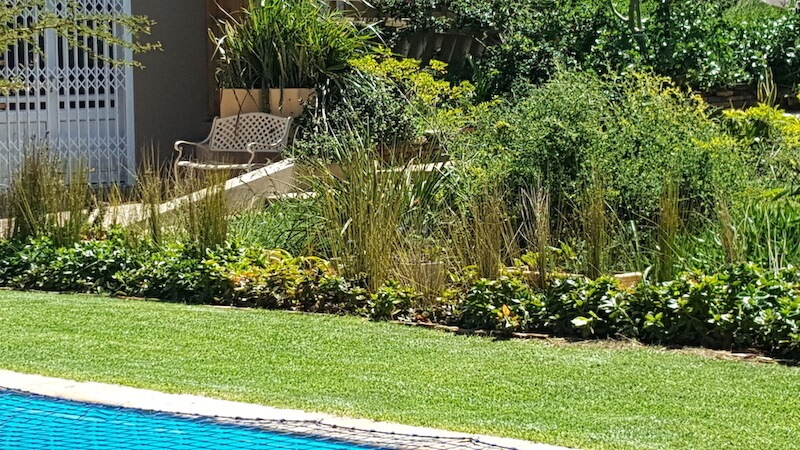 Hillscapes garden and pool